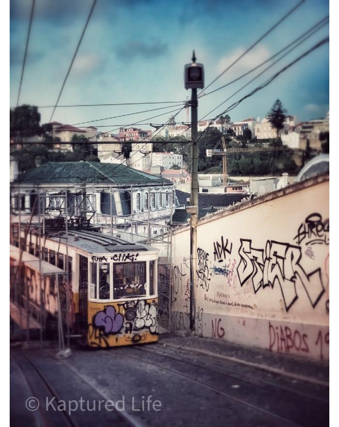 Climbing graffitis
