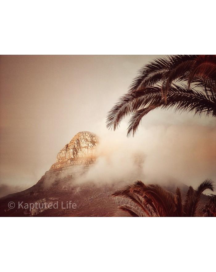 Tropical Mountain