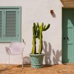 🌵 Summer Colors  #photography #photographylovers#photographyaddict #artphotography #inspiration #diasec #digigraphie #holidays #vacations #cactus #garden #photographycomposition #photographydecor #artgallery #limitededition #bekapt